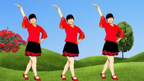 鸽子广场舞《花儿为你开》欢快动感32步,老少皆宜