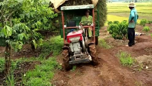 中国产拖拉机在越南,这运载量让人折服!