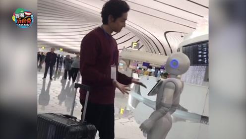 """胡歌与机器人对话太滑稽,""""手脚并用""""仍无法交流"""