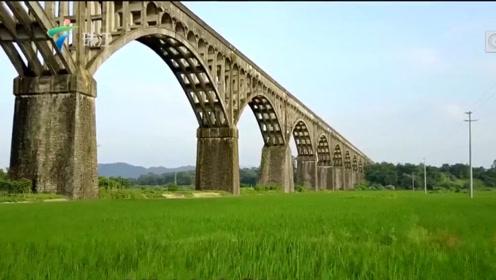 值得一看!广东新增33处全国重点文物保护单位,假期又有地方去啦