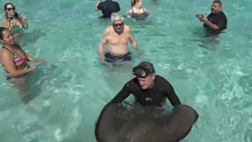 """加勒比海怪鱼经常上岸""""攻击""""游客 反倒成了当地特色旅游景点"""