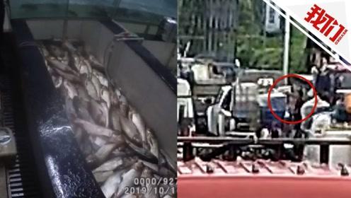 水质突变300余斤鱼相继死亡 监控拍下男子鬼鬼祟祟一幕