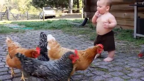 宝宝正在喂鸡,接下来的动作够笑一星期,镜头拍下全过程
