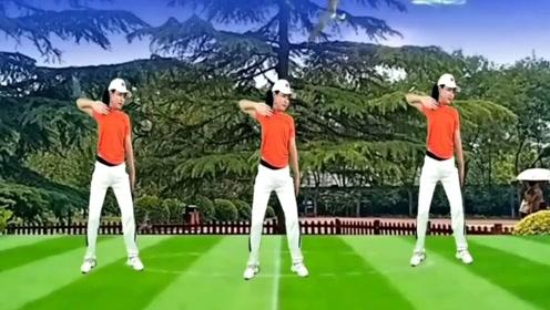 曹汉芝广场舞《不做你幸福的玫瑰》动感健身收腹操教学