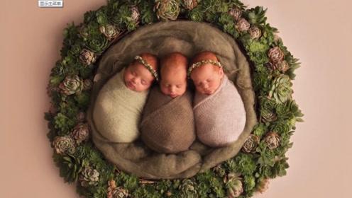 三胞胎小娃拍满月照,三只肉肉乎乎的小娃,连工作人员都被萌翻了