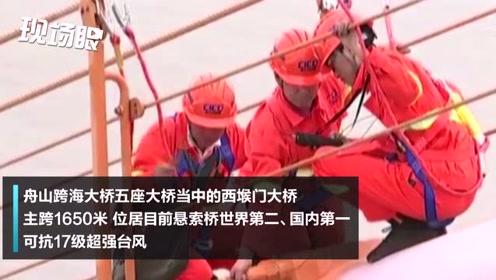 专家在百米高空梁柱上行走作业!舟山跨海大桥十年大检修