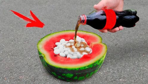脑洞实验:将可乐与曼妥思放入掏空的西瓜里会怎样?老外真的被吓到了