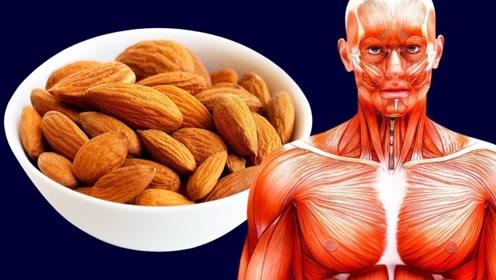 假如让你每天坚持吃二十个杏仁,时间久了会怎样呢?