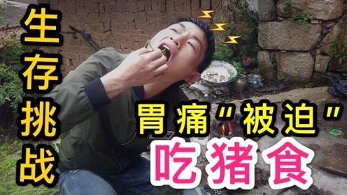 废弃农屋生存挑战第二天,小伙为充饥做猪食,胃痛难以下咽也要吃!