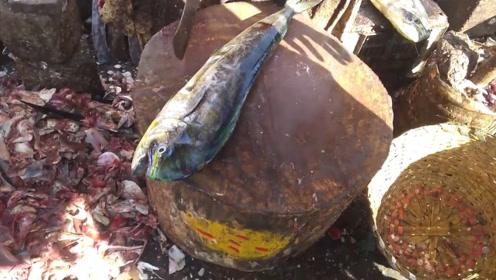 印度鱼市的万能砍鱼法,只要是条鱼就得用砍的!
