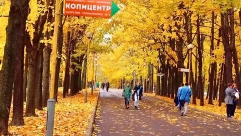 此国的秋天,像油画一样漂亮,比加拿大的秋天还要美