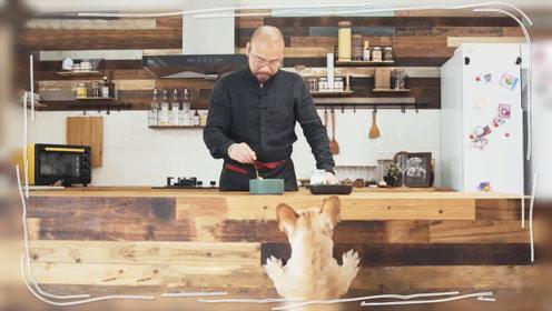 那个给狗做饭的男人,年入千万