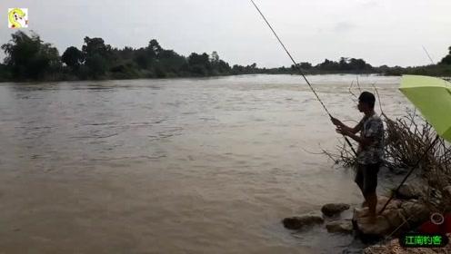 大叔到河边撒下钓竿已久,钓竿拉动大叔就拉钓瞬间收获大罗非