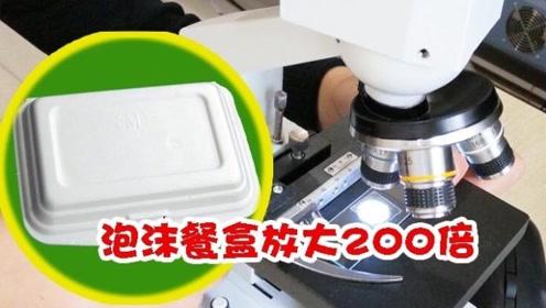 为何要少吃外卖,泡沫餐盒在显微镜下200倍,最可怕的是你还在吃