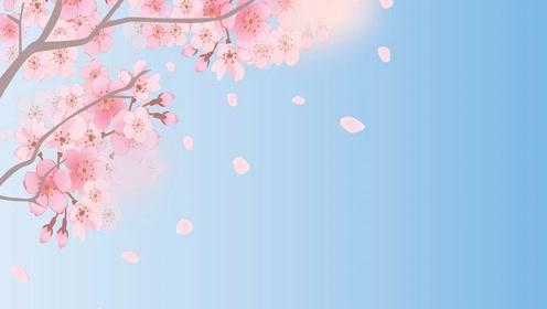 【科学嬉游记】地球——春天是什么样的