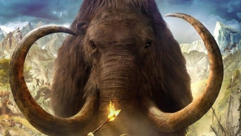 大象竟从飞机上跳了下来,动物的疯狂举动让人惊叹!