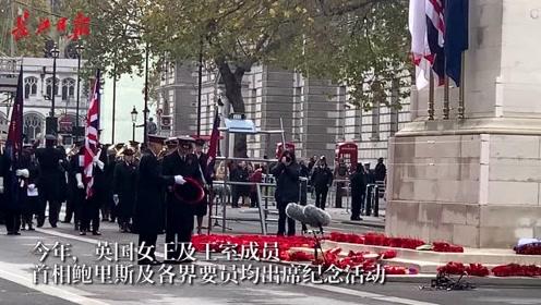 """英联邦国家的""""双十一""""这样过,戴上小红花,纪念一战阵亡将士"""