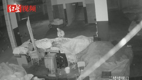 一男子三偷水果终被抓 涉嫌盗窃罪被警方取保候审