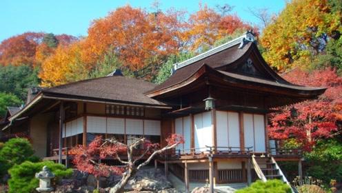 """日本土地""""私有化"""",别墅是""""穷人标配"""",富士山竟是""""租""""来的!"""