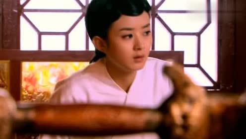 陆贞传奇:陆贞的心眼真多,竟然迷晕侍女