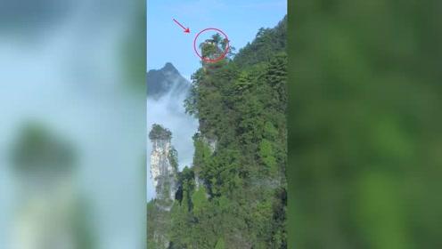 贵州大山顶上发现一座房子,如此险峻,古人是如何建的?
