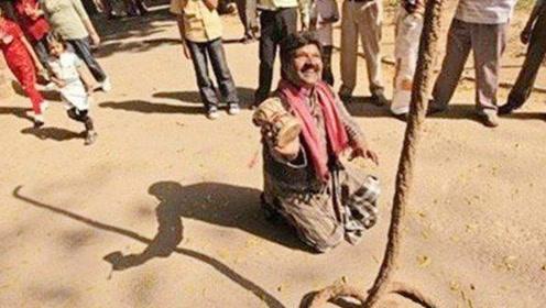 印度神奇魔术通天绳,为什么可以凭空升到天上,到底是什么原理?