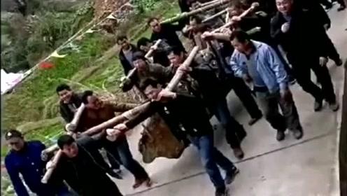 北京的老板高价收购的老木头,在山里运不出去,只能重金请几十人抬!