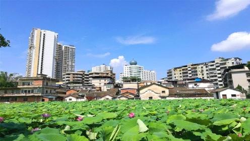 """广东最""""郁闷""""的地级市,拥有华南第一大湖,经济却发展不起来"""