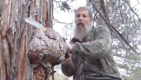 大树长出一个树瘤,老外将它锯下来拿回家,加工后让他喜笑颜开!