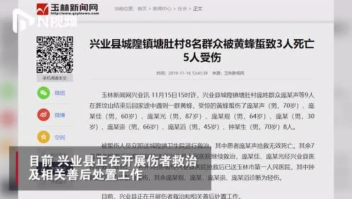 广西玉林村民遭黄蜂蜇刺致3死5伤,消防部门:蜂窝直径50厘米