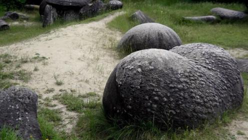 地球上最诡异石头,喝点水疯长数十倍还会自己走,专家切开后彻底愣了