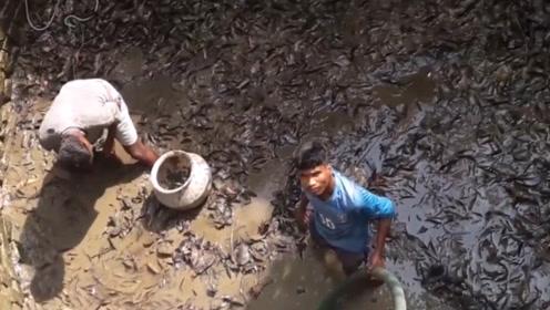 百年古井传来沙沙声,村民将水抽干,看到井底生物,倒吸一口凉气