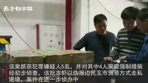 500吨走私冻虾被查!以伪报边民互市贸易方式入境,5人被抓
