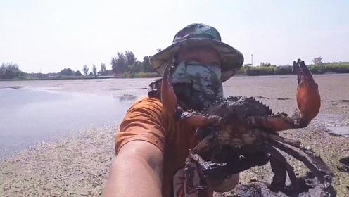 村民正在水塘搞野,发现浑浊泥洞,用铁钩一钩大螃蟹无处可逃了