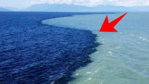 太平洋大西洋海水万年不相融,起初不知道原因,看完后涨知识了