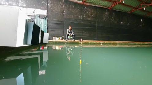 钓鱼:在室内鱼池里玩一玩