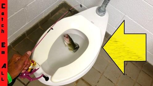 在臭水沟里钓鱼也就算了,竟然还有人在马桶里钓鱼,想法还真是够味的