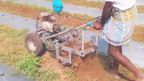 """40岁农民发明""""小型耕耘机"""",一天能耕5亩地,500元造一台"""