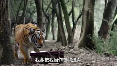 五十岁老太怀孕生下怪物,不料老伴一看当场吓晕,连老虎都怕他