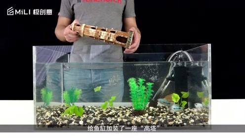 """小伙做出""""反牛顿""""鱼缸,连鱼都被骗了,这是怎么回事?"""