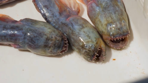 """美食主播来到日本佐贺,寻找并品尝""""外星鱼"""",这鱼长得真别致"""