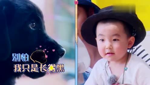 萌娃被狗狗吓到直接躲在罗志祥怀里,叫他姐姐,小猪是拒绝的