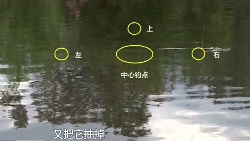 钓鱼大师指出:扎蛤蟆打窝钓法在竞技钓中还是非常好用的