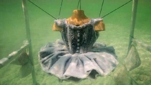 服装设计师将一条黑色裙子放入死海,2年后捞出,惊艳众人!