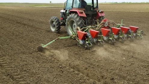现在如何让农村能实现耕地量足质优?
