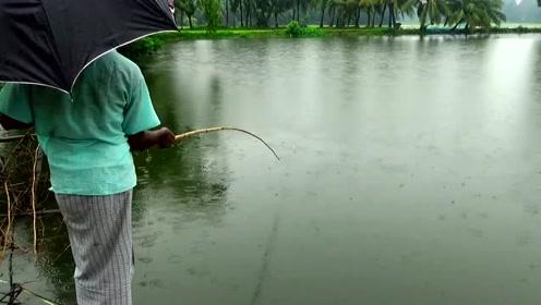 就这个杆子,钓个十来斤的鱼根本不费劲,比买的结实多了
