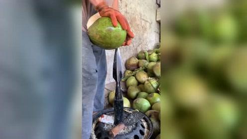 开椰子皮有多危险?椰子好喝不好剥,每一双手都是粗糙的!