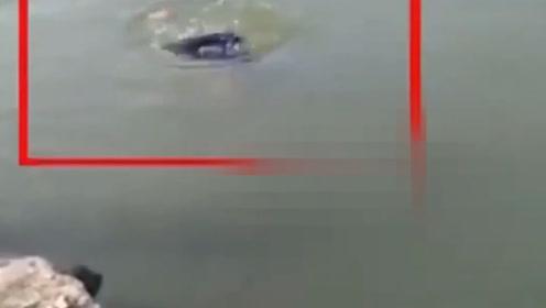 印度19岁少年落水挣扎体力不支溺亡,一旁猪队友不救人还拍视频