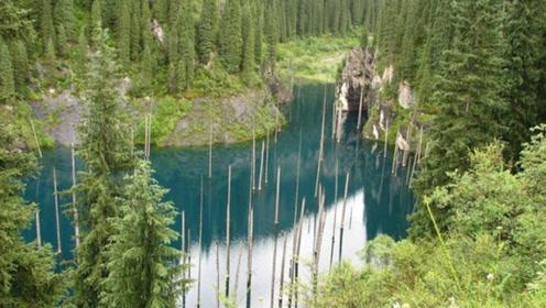 """""""山中现湖泊,树木倒着往下长"""",这样奇特的自然景观,你见过吗?"""