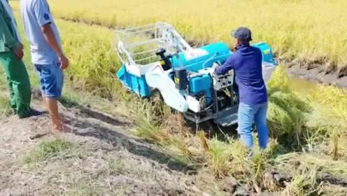 越南农民说这台收割机是中国产的,我看不像